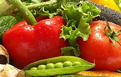 Seguridad de los Alimentos